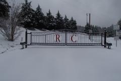 RCRD1