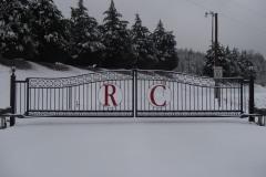 RDRD2